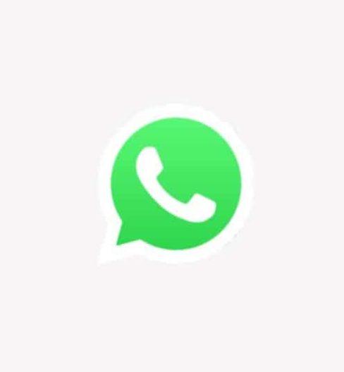 Contact Ingel