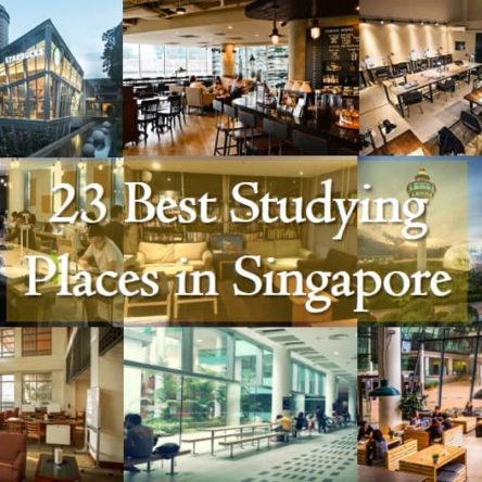 23 Best Studying Places in Singapore